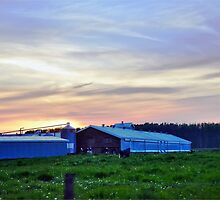 Dusk Farm by kendlesixx