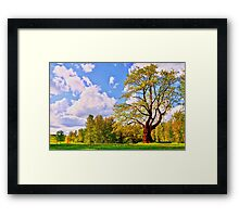 Tree and Park Framed Print