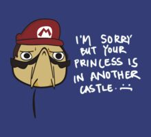 Sorry but your Princess is at another Castle! by kassius