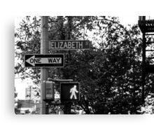 Elizabeth Street Canvas Print