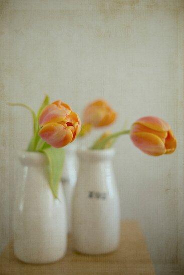 Orange Tulip Trio by Hege Nolan