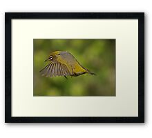 Flight 207 - you are cleared to land on runway 2......! Framed Print