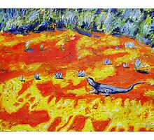 Outback Lizard Photographic Print