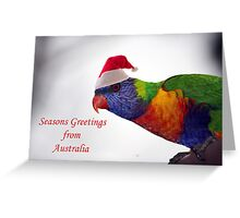 Australian Rainbow Lorikeet Christmas Greeting Card  Greeting Card
