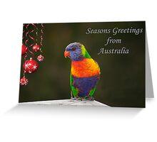 Rainbow Lorikeet Seasons Greetings card  Greeting Card