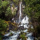 Tarawera Falls by Paul Mercer