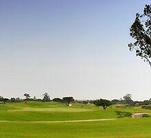 Golf Fairway by Henrik Lehnerer