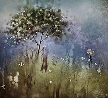 wonder II by © Karin Taylor