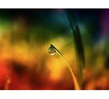 rainbow dew drop Photographic Print