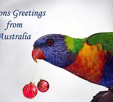Rainbow Lorikeet Seasons Greetings from Australia  by Patricia  Knowles