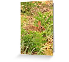 Wascaly Wabbit Greeting Card