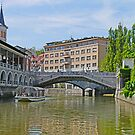 Cruising on the Ljubljana by Graeme  Hyde
