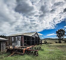 Country Sheds by Marian Moore