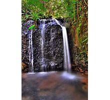 Teresa Falls Photographic Print