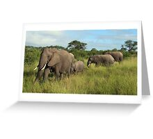 """elephant parade"" Greeting Card"