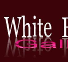 White Frame Gallery by Elisabeth Dubois