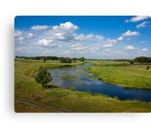 summer nature Canvas Print