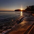 First morning sun Manly by Adriano Carrideo