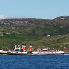 PS Waverley by Lynn Bolt