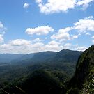 From the top of the Coogles  by MardiGCalero