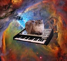 Piano Cat In Space by Eliotmad