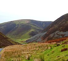 Mennock Pass by mikebov