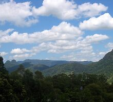 Looking back at the Coogles from, Springbrook by MardiGCalero