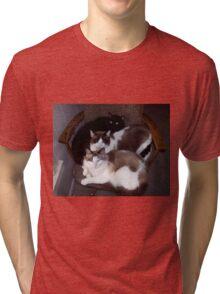 Three Cats Tri-blend T-Shirt