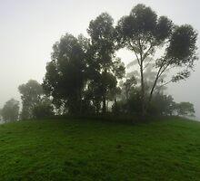 Mount Lofty VI by Adam Le Good