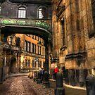Cobblestone road in Dresden Germany by pdsfotoart