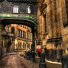 Cobblestone road in Dresden Germany by pdsfotoart