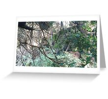 Forest01 Greeting Card