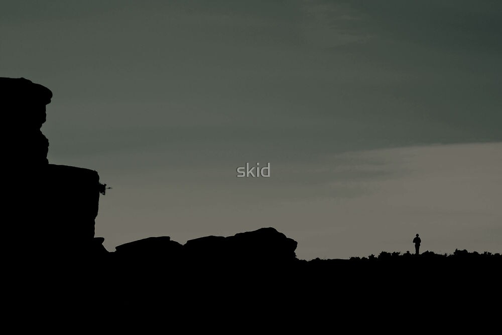 Standing Alone On Top Of The World  by skid