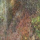 Moss II by Olsen
