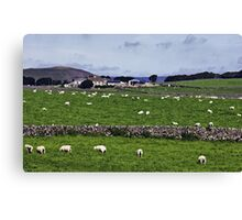 Rowter Farm and Mam Tor Canvas Print