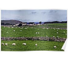Rowter Farm and Mam Tor Poster