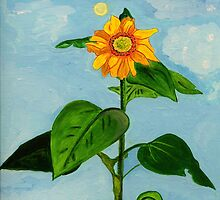 The Sunflower that grew in the Rose Garden. by Anne Gitto
