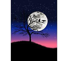Raven tree Photographic Print