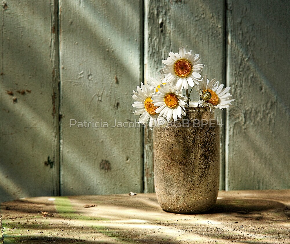 A Jar of Daisies by Patricia Jacobs CPAGB LRPS BPE3
