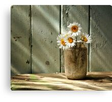 A Jar of Daisies Canvas Print