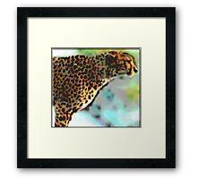 Speeding Spots Framed Print