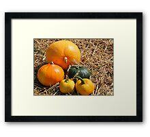 Nature's Gifts VII Framed Print