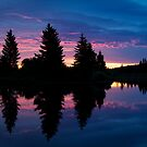 Dark Morning by Justin Atkins