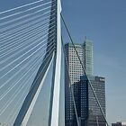 Erasmus bridge and Maastower by Peter Wiggerman