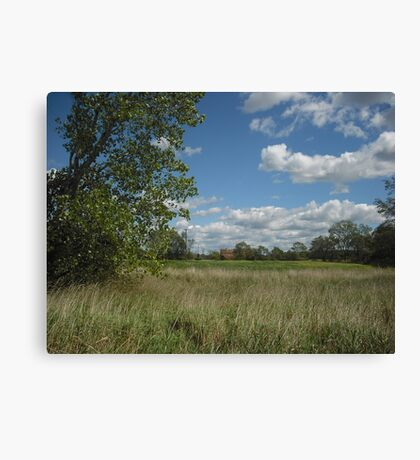 Country Road View Canvas Print