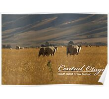 Central Otago Poster