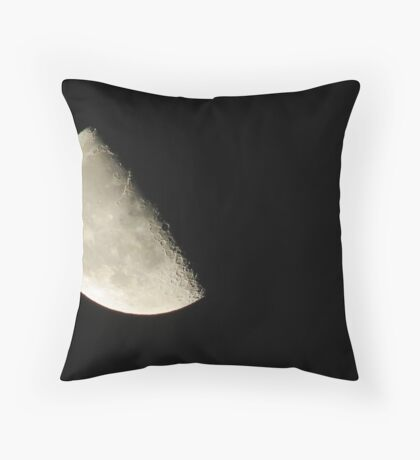 Half In Half Out Throw Pillow