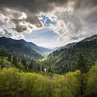 Great Smoky Mountains Landscape Photography - Spring at Mortons Overlook by Dave Allen