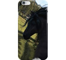 Black Stallion iPhone Case/Skin