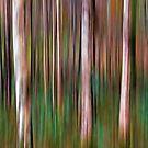 Into the Woods No1 - Digital Art by David Alexander Elder